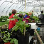 Growing Together-Community Gardening for Carers of Adults with Autism